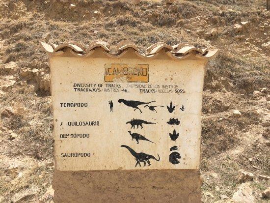 Dinosaur Tracks (Cal Orck'o): photo0.jpg