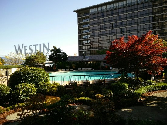 The Westin Bayshore, Vancouver: view from pool side