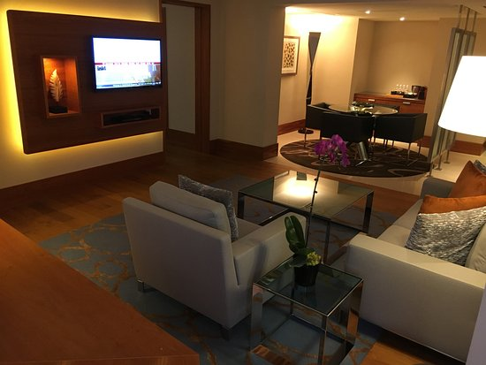 Grand Hyatt Singapore: Living room in Premier Suite