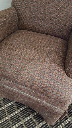 เชพเฟิร์ดสวิลล์, เคนตั๊กกี้: Chair