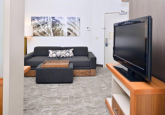 Ashburn, VA: Studio Suite - Living Area