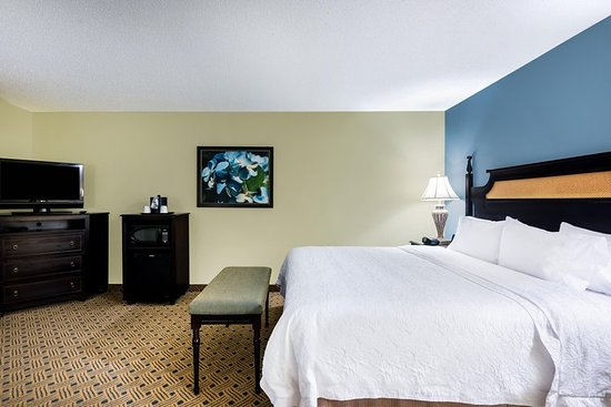 Hampton Inn Murrells Inlet/Myrtle Beach Area: 1 King Bed Standard
