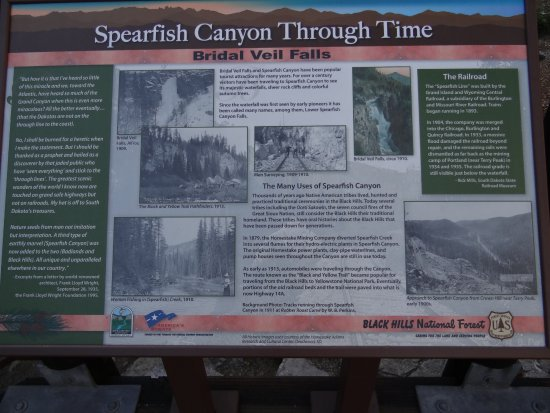 Spearfish Canyon Picture