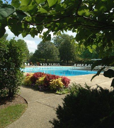 Aurora, OH: Pool View