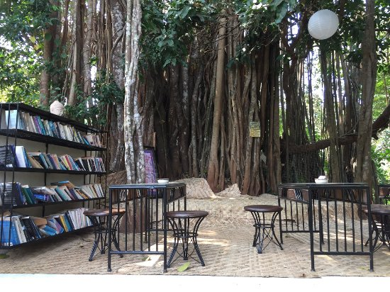 The Banyan Soul: The beautiful 150 year old Banyan Tree