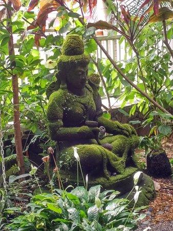 Holuakoa Cafe & Gardens : In their lovely garden