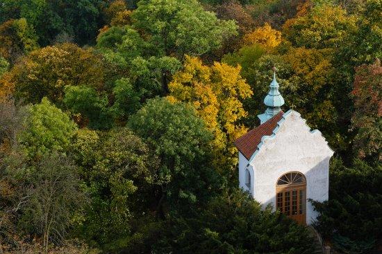 Anna Hotel: Vista dalla Torre di Petrin