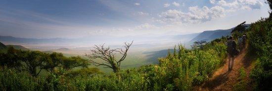 Wayo Africa: Ngrorongoro Crater walking safari