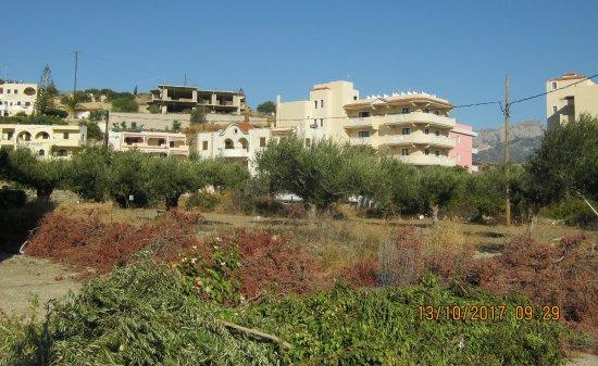 Фотография Socrates Luxurious Studios & Apartments