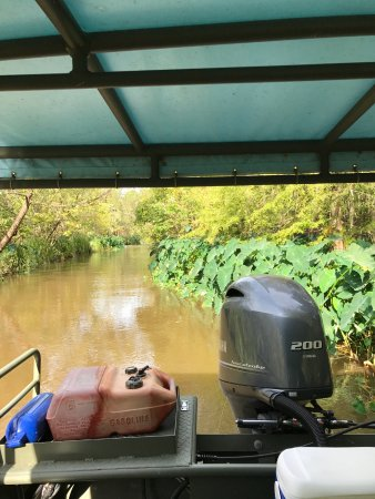 Pearl River Eco Tours: our boat