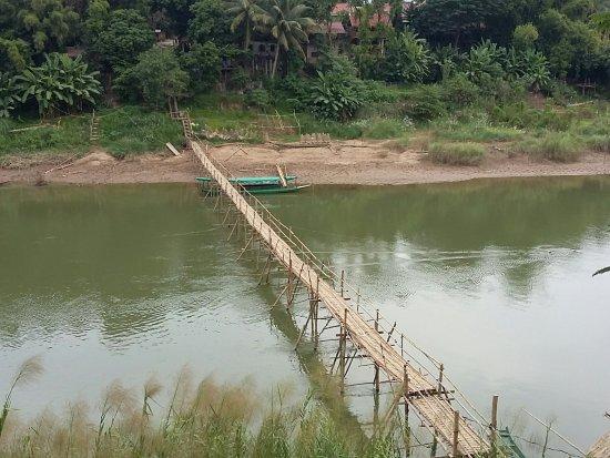 Bamboo Bridge: 20171106_155426_large.jpg