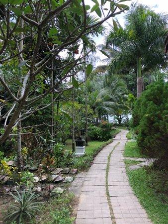 A beach oasis