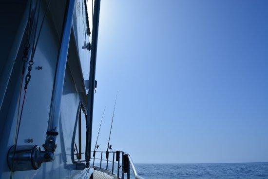 Oceangarve