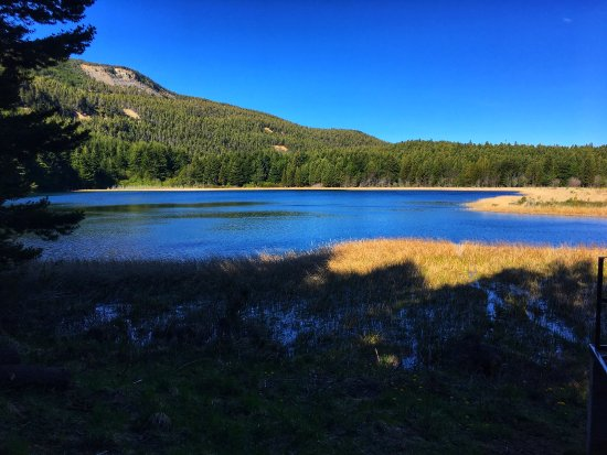 Coyhaique National Reserve: photo2.jpg