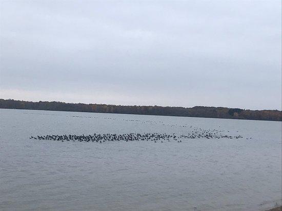 Delaware, OH: photo1.jpg