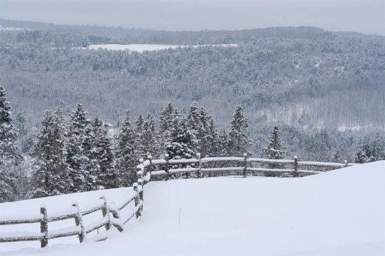 Lyndonville, VT: A beautiful snowy view from the Wildflower Inn