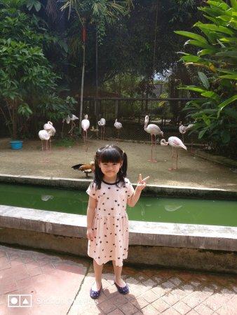 Perai, Malaysia: Penang Bird Park