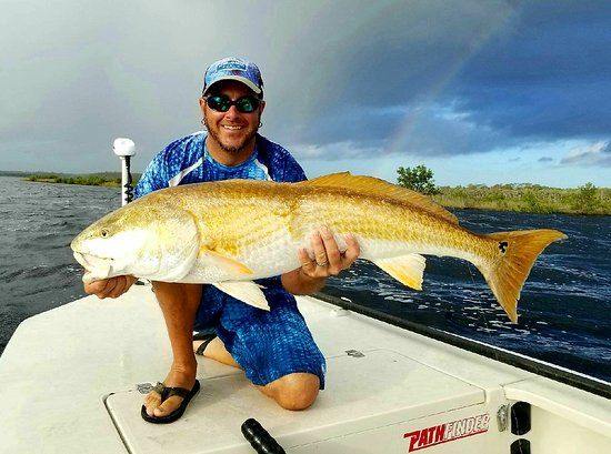 Ormond Beach, FL: Some recent catches out of Ponce Inlet, Florida