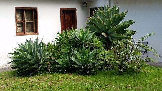 Lasso, Ecuador: entrata esterna camera