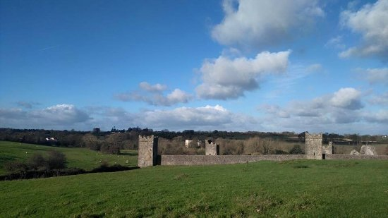 County Kilkenny, Irlanda: Amazing afternoon at Kells Priory !