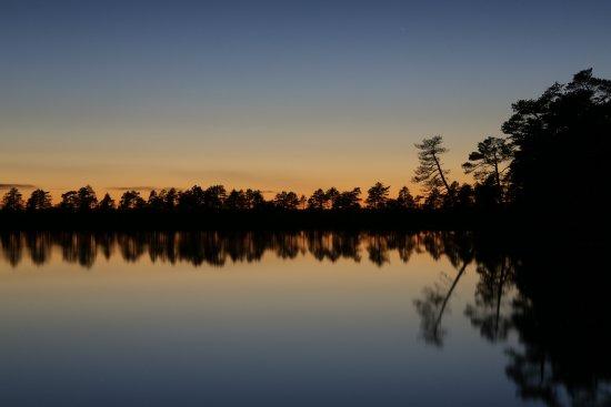 Kauhajoki, Suomi: Kauhanevan-Pohjankankaan kansallispuisto