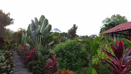 Hotel Rancho Cerro Azul: Immerso nel verde