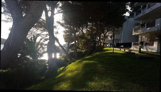 Inturotel Cala Azul Park: 20171031_083454_large.jpg