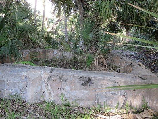 Canaveral National Seashore: Ruins of Eldora, Florida can still be seen here