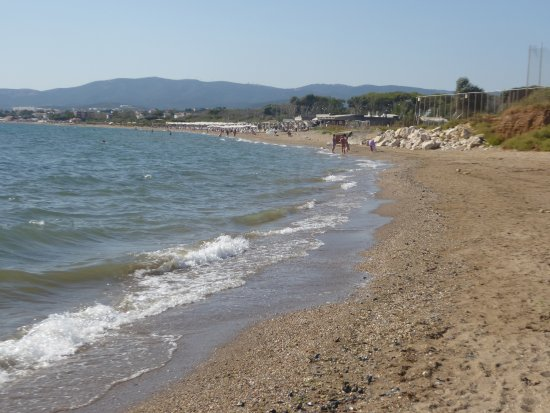 Alexandroupoli, Greece: the beach in all its length