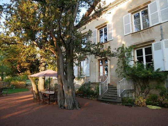 Château de Buffavent : Jardin