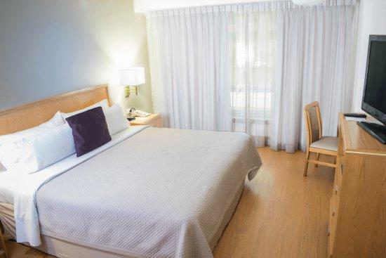 이스테이 호텔 몬테레이 히스토리코