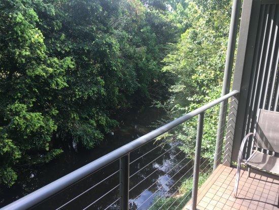 Pomodoras on Obi: Obi Obi Creek at the back verandah.