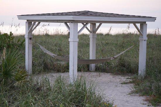A Beach Retreat on Casey Key: hammock