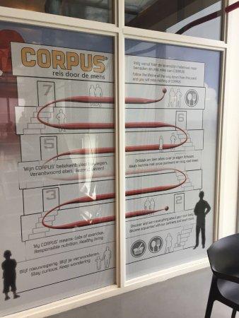 CORPUS 'journey through the human body': Traject