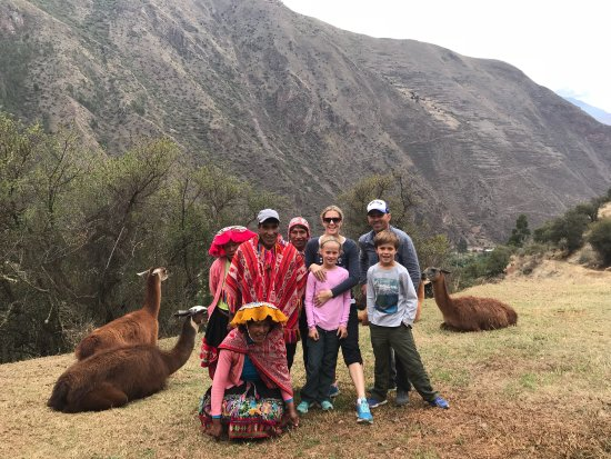 Llama Pack - Day Tours : photo0.jpg