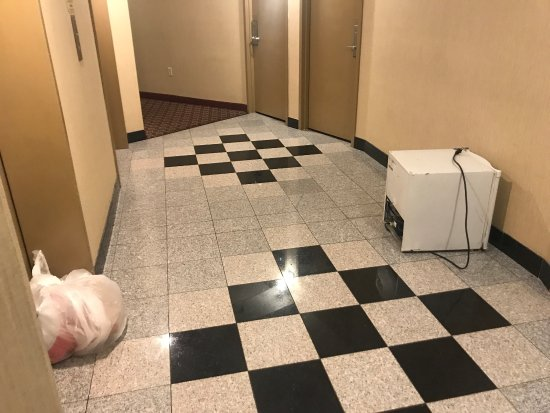 Penrose Hotel: photo1.jpg