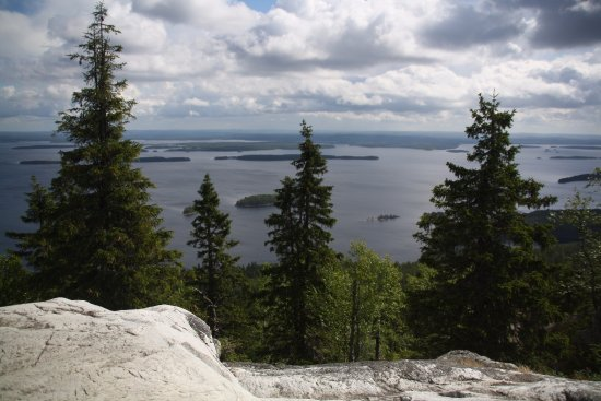 Koli Nature Centre Ukko