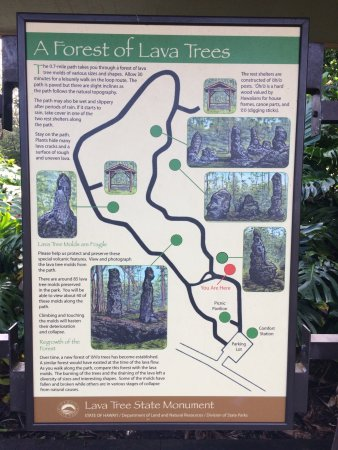 Lava Tree State Park: photo8.jpg