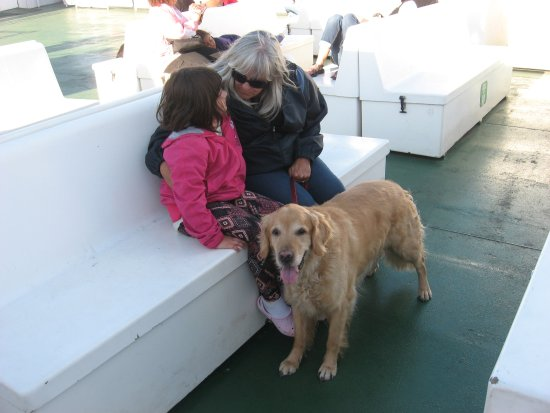 Wood Islands, แคนาดา: A sunny Labour Day weekend return trip to Caribou with Patti, Ellie and Levi (The Free Dog)