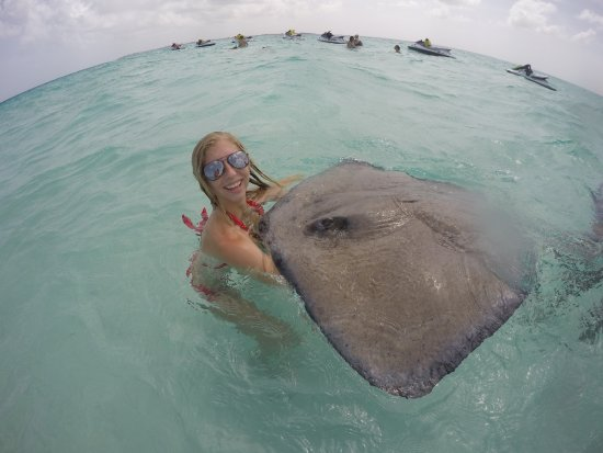 East End, Grand Cayman: Catching a stingray all on my own