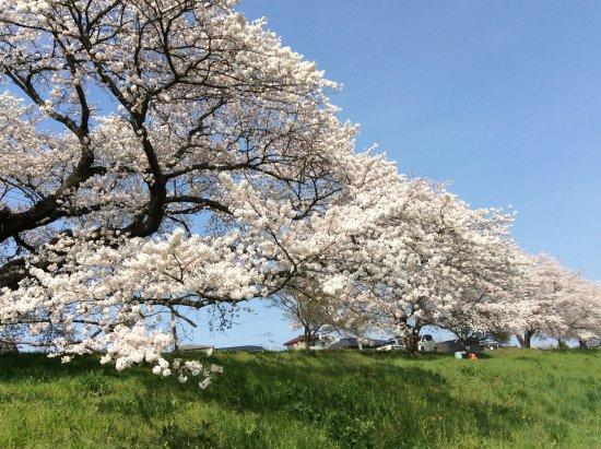 Ogawara-machi, Japan: 晴れた日は特に美しい