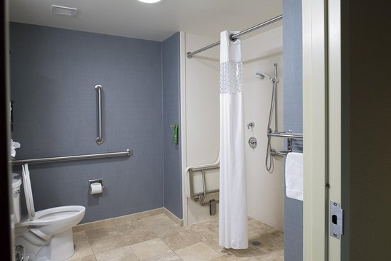Hampton Inn & Suites Vineland: Accessible Bathroom