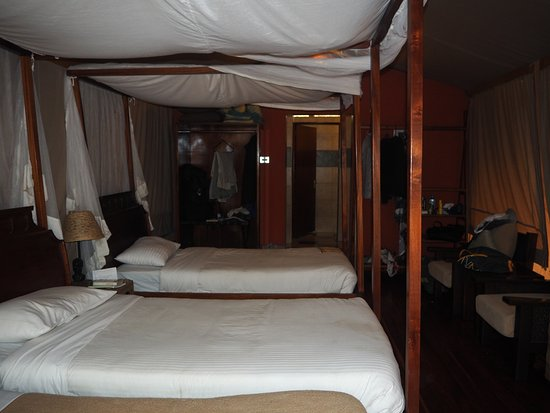 Mara Leisure Camp: Inside the tent