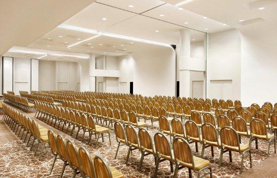 Sheraton Milan Malpensa Airport Hotel & Conference Centre: Orion - Theatre