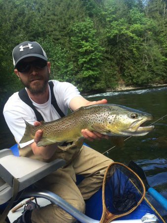 Shawnigan Lake, Canada: The Cowichan River is home to many species of fish on any given day you have a chance of catchin