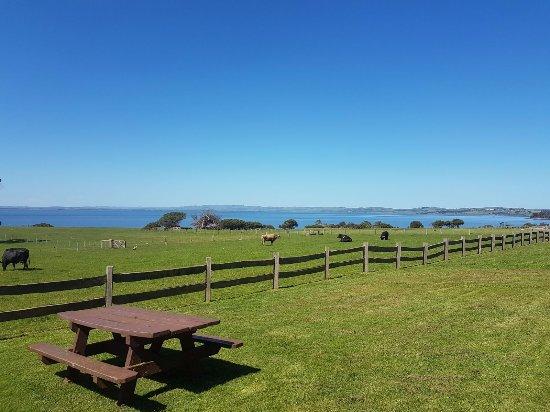 Phillip Island, Australia: Nice place to stroll