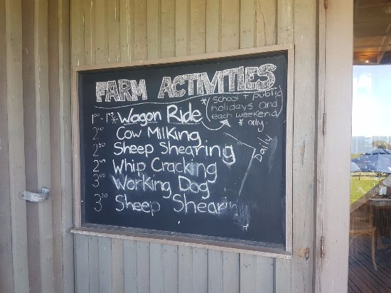 Phillip Island, Australië: Schedule for farm activities and demonstration