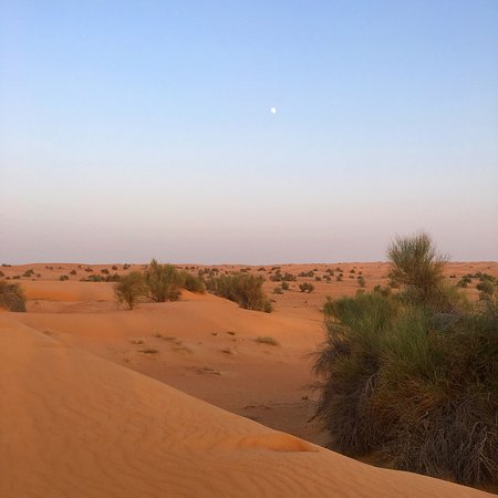 Al Maha, A Luxury Collection Desert Resort & Spa: photo2.jpg