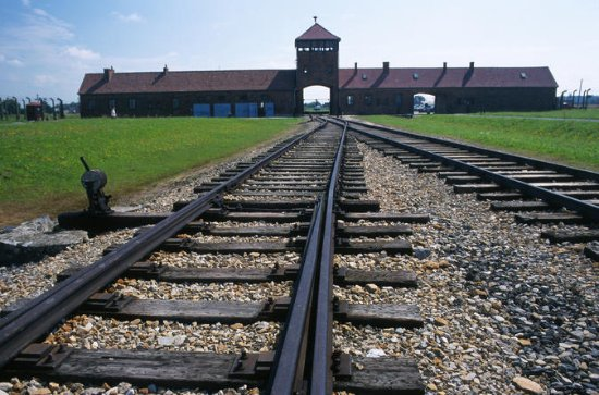 Auschwitz-Birkenau Small-Group Tour...