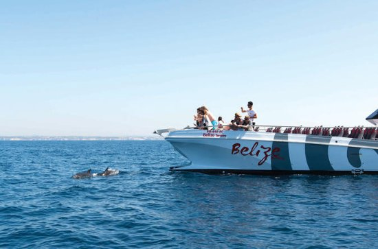 Dolphin Watching and Cave Boat Cruise...